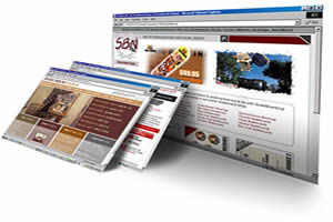 Professional web design, create online shops